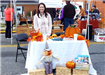 29th Annual Harvest Festival 2018